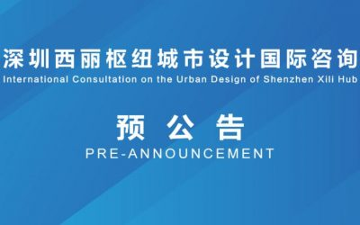 Architecture Design Competitions: International Consultation on the Urban Design of Shenzhen Xili Hub
